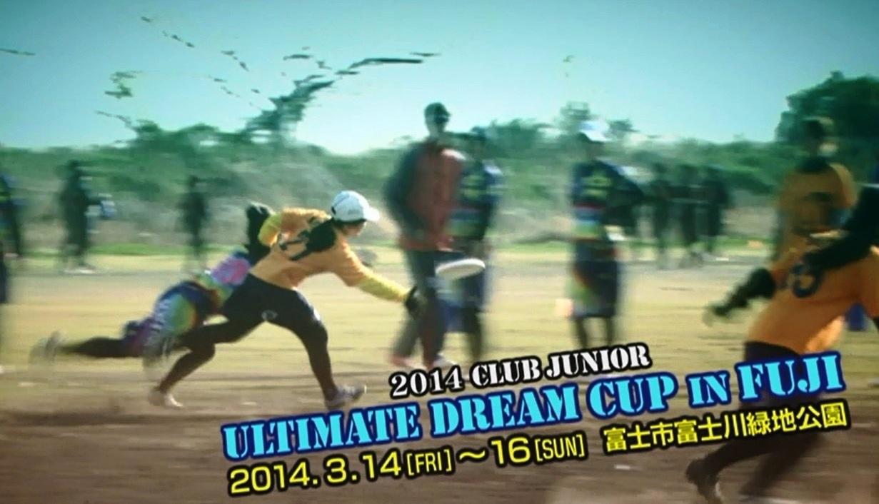 アルティメットドリームカップ2014